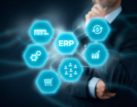 Software as a Service (ERP)